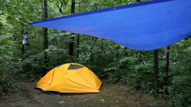 Photo of Buying Waterproof Tarps? 3 Major Things to Keep in Mind