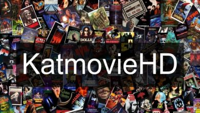 Photo of katmovie cc website – Is it safe for you to download the latest movies for free?