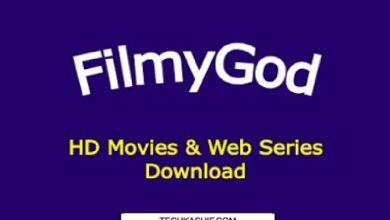 Photo of Filmygod | Filmygod in | Filmygod. in | Filmygod wap – an illegal movie downloading website
