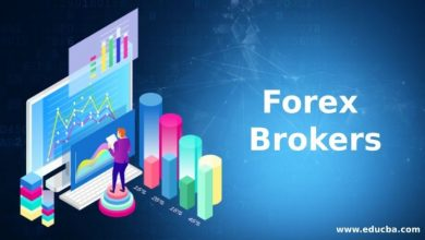 Photo of Why Should You Choose The Best Forex Brokers To Trade Successfully?
