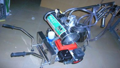 Photo of All you need to know About Single Cow Milking machine for sale