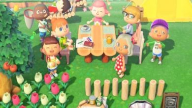 Photo of Animal Crossing New Horizons What Airport Color Means & How To Change It